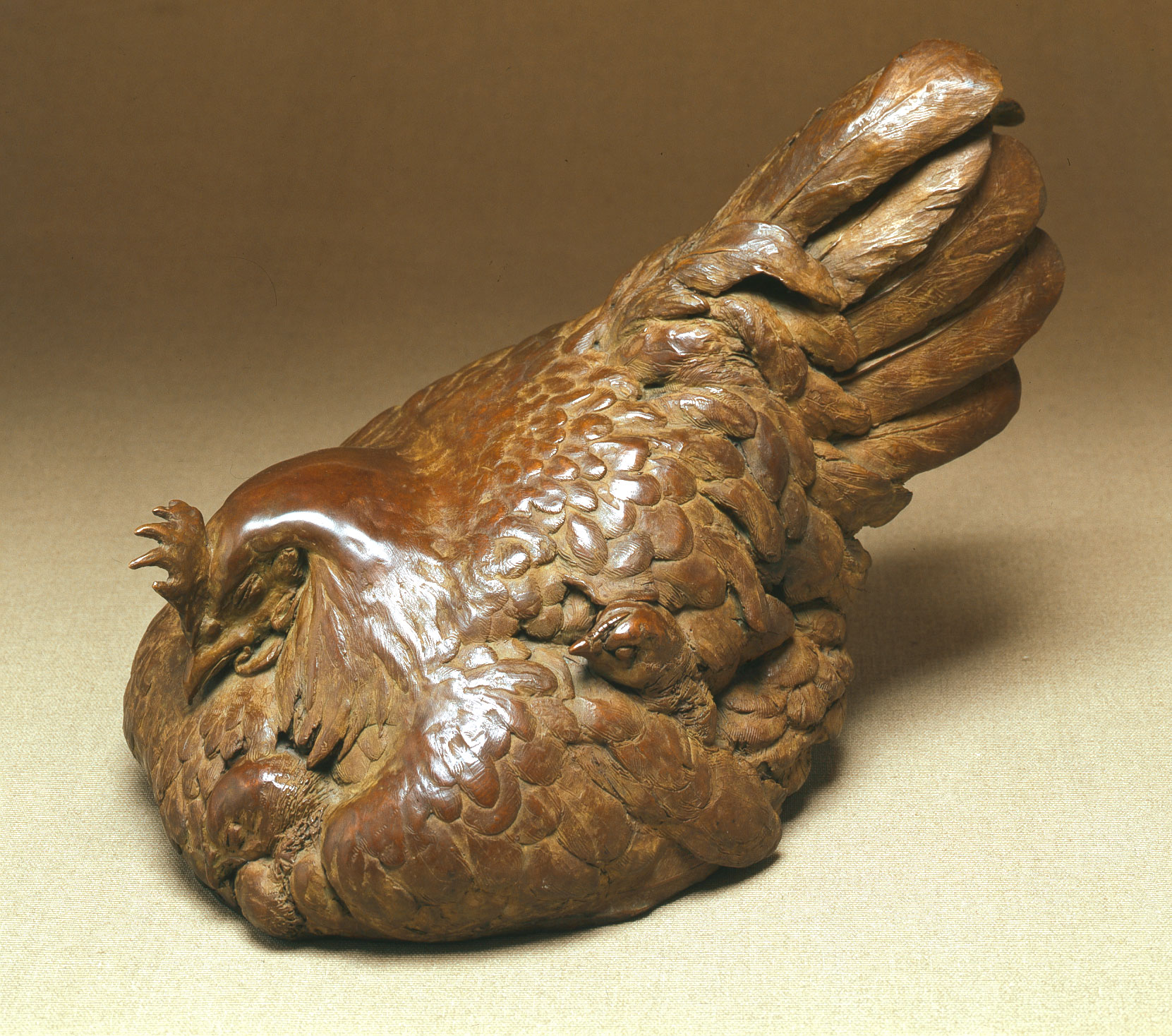 Broody hen with four chicks - bronze