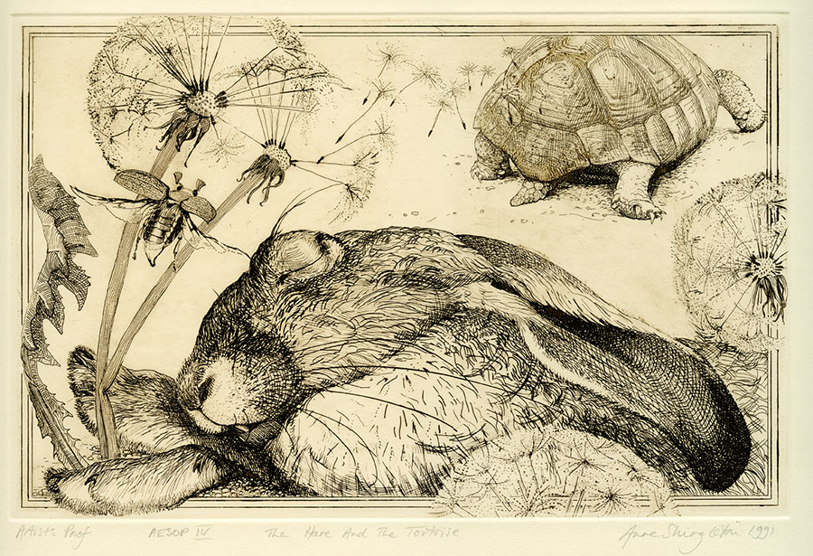 Aesop's fables IV - The hare and the tortoise