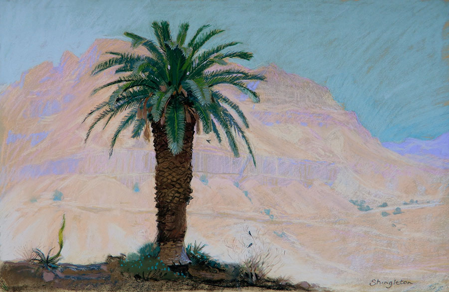 Old Palm Tree, Ein Gedi Kibbutz, Israel